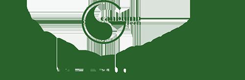 Green Canpump Inc.